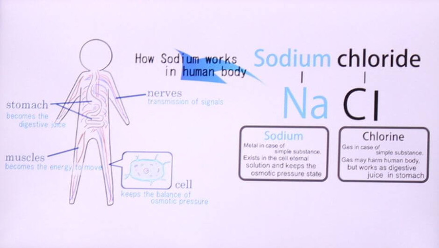 how sodium works in the human body