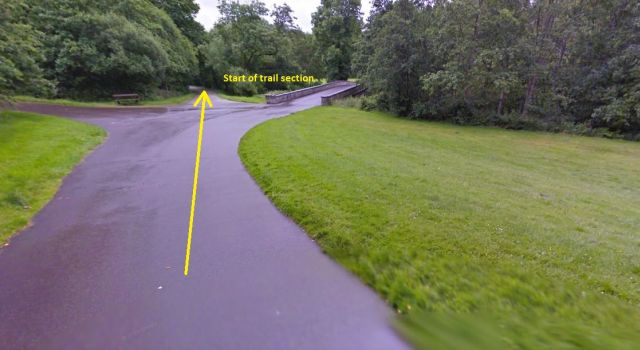Doneraile Park 5k - Start Area