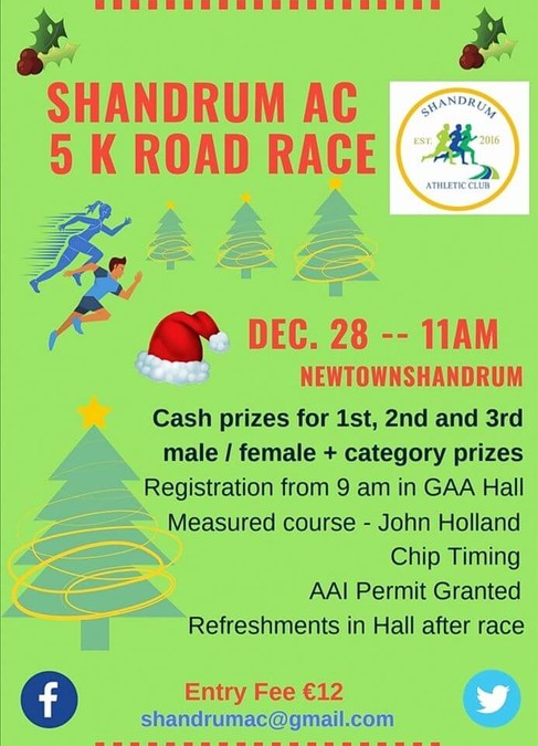 shandrum 5k road race flyer 2019