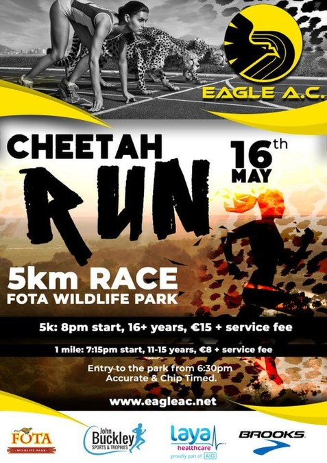 cheetah run flyer 2019
